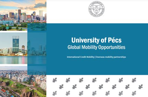 Brochure of the Global Mobility Opportunities